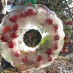 Making a nature ice wreath