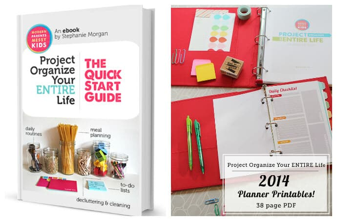 Project Organize Your Entire Life