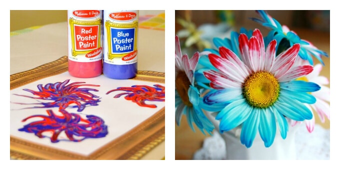Patriotic Art Projects - Firework Paintings and Dyed Flowers
