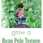 The bean pole teepee