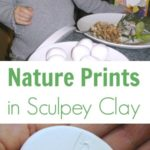 Making Nature Prints in Sculpey
