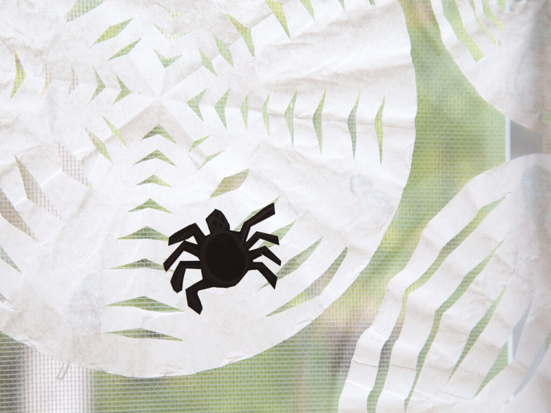 coffee filter spider web featured image