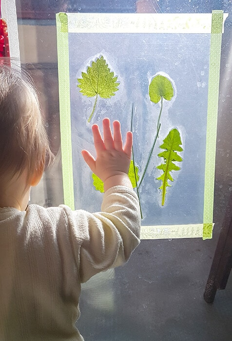 Contact paper & leaves are great first art experiences for babies and toddlers
